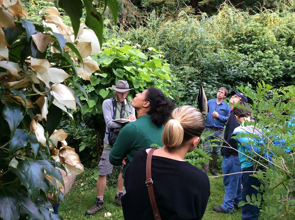 ELL's visit to Martin Crawford - ART - Forest Garden in Devon